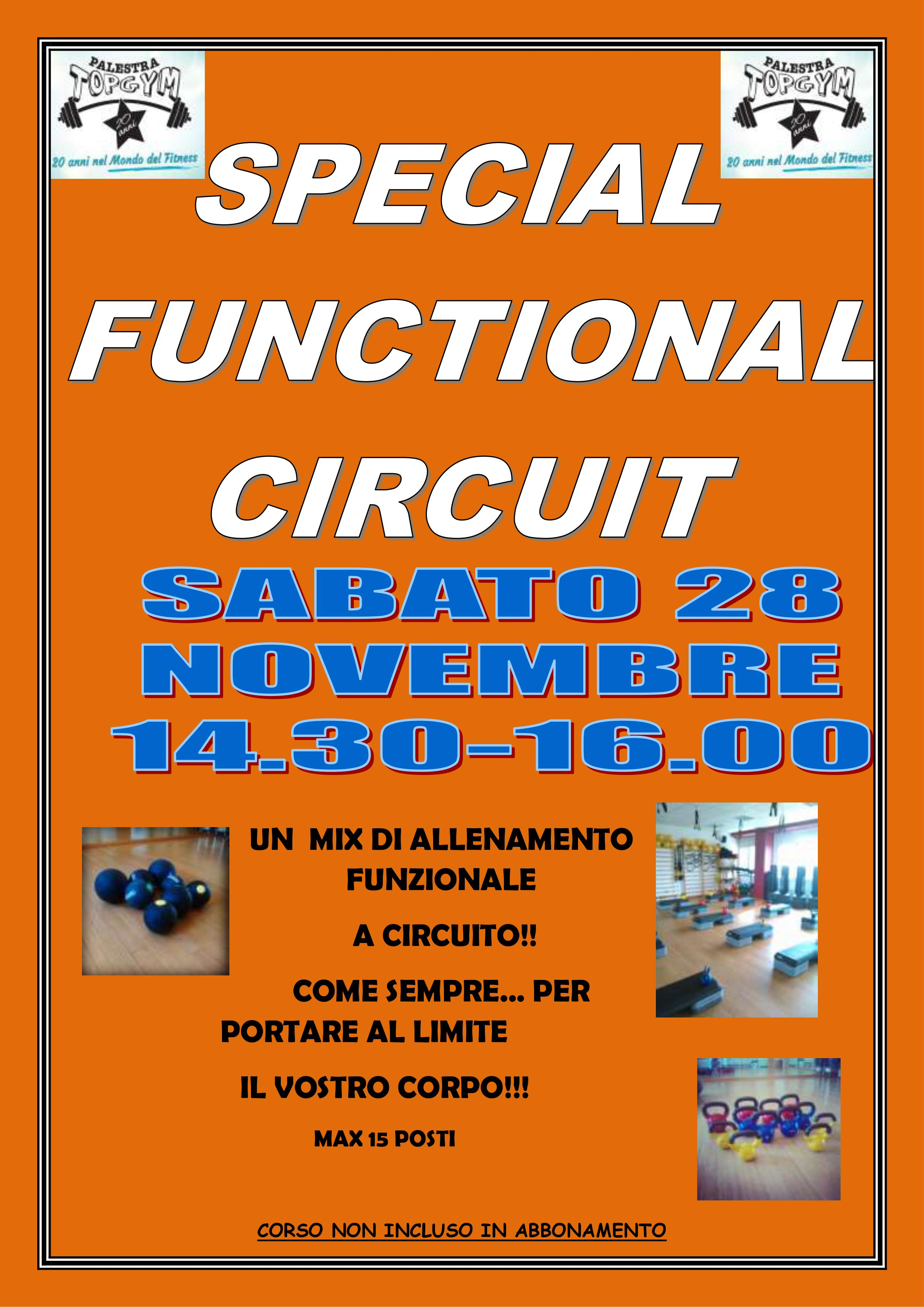 Special Functional Circuit